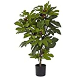 Nearly Natural 5440 Fig Tree, 32-Inch,Multi Color   Amazon (US)