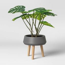 Faux Monstera Floor Plant with Stand Green - Opalhouse™ | Target