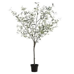 Faux Potted Olive Trees   Pottery Barn (US)