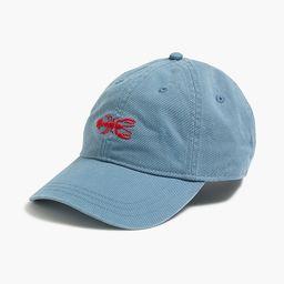 Washed critter baseball cap | J.Crew Factory
