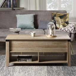 Multipurpose Lift Top Wooden Coffee Table With Storage And Open Shelf | Wayfair Professional