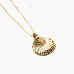 Odette New York® La Mer Shell Pendant Necklace   Madewell