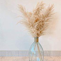 Natural & Dried Pampas Grass (3 Piece) for Flower Arrangement & Vase Decoration – Boho Bohemian... | Amazon (US)