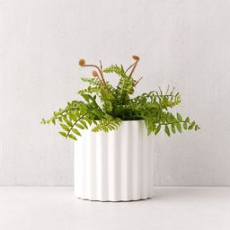 """Mel Ceramic 5"""" Planter 