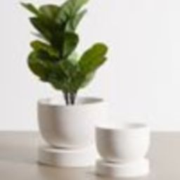 Archer Planter | Urban Outfitters (US and RoW)