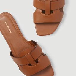 Yara Leather Strappy Sandals   Ann Taylor   Ann Taylor (US)