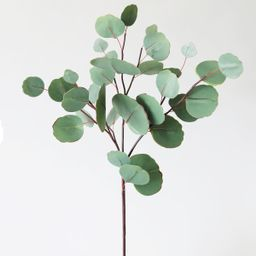 """Artificial Real Touch Silver Dollar Eucalyptus Leaves - 26"""" 