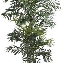 Nearly Natural 5289 6.5ft. Golden Cane Palm Silk Tree,Green | Amazon (US)