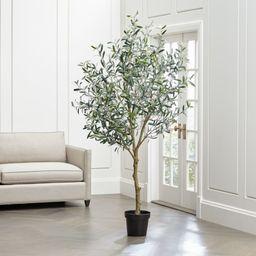 Artificial Olive Tree + Reviews | Crate and Barrel | Crate & Barrel