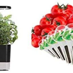 AeroGarden Black Harvest Indoor Hydroponic Garden & Red Heirloom Cherry Tomato Seed Kit (6-pod) | Amazon (US)