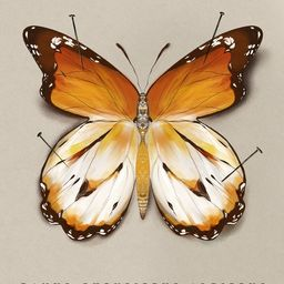 The Study of Butterflies No. 2   Artfully Walls