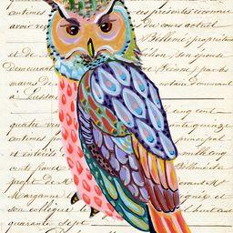 Vintage Owl   Artfully Walls