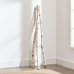 Tall Birch Branches, Set of 3 + Reviews | Crate and Barrel | Crate & Barrel