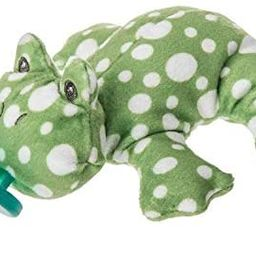 Mary Meyer WubbaNub Infant Pacifer ~ Fizzy Frog | Amazon (US)