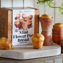 Mini Flower Pot Bread Kit, Set of 8 | Terrain