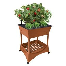 CITY PICKERS Easy Pickers Plastic Raised Garden Bed Garden Grow Box with Stand-2335 - The Home De...   The Home Depot