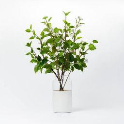 """16"""" x 18"""" Artificial Kerria Japonica in Glass Vase - Threshold™ designed with Studio McGee   Target"""