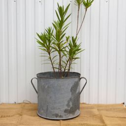 XL Vintage Galvanized Zinc Planter - Hungarian Two Handled Pot - Garden Planter - Rustic Garden D... | Etsy (US)