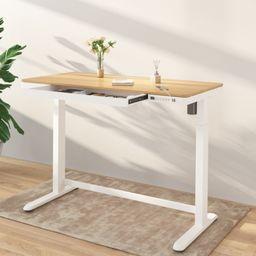 "Comhar All-in-One Standing Desk Wooden Top - 48"" W   FlexiSpot"