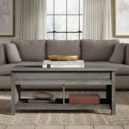 Tilden Lift Top Coffee Table with Storage | Wayfair North America