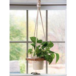Planter Hanger with Pot - Gardener's Supply Company | Target