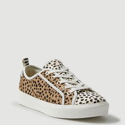 Natalia Spotted Haircalf Sneakers | Ann Taylor (US)
