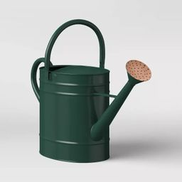 Large Steel Iron Watering Can Green - Smith & Hawken™   Target