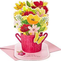 Hallmark Paper Wonder Mothers Day Pop Up Card (Flower Bouquet, You Deserve This Day) (699MBC1119) | Amazon (US)