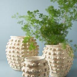 Minka Textured Pot | Anthropologie (US)