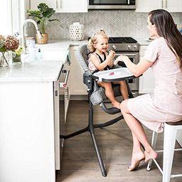 Baby Delight Levo Deluxe Adjustable Highchair, Charcoal Tweed | Amazon (US)