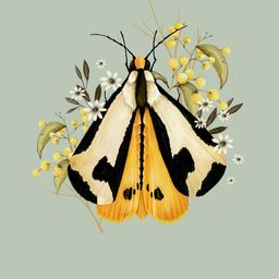 moth and berries | Artfully Walls