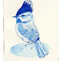 Blue bird | Artfully Walls