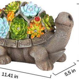 GIGALUMI Turtle Garden Figurines Outdoor Decor, Garden Art Outdoor for Fall Winter Garden Decor ,... | Amazon (US)