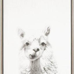 Kate and Laurel Sylvie Alpaca Black and White Portrait Framed Canvas Wall Art by Simon Te Tai, 18... | Amazon (US)