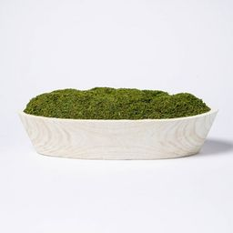 """5"""" x 7"""" Artificial Moss Wood Plant Arrangement - Threshold™ designed with Studio McGee 
