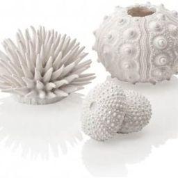 biOrb White Sea Urchins Set | Amazon (US)