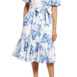 Toile Clip Dot Puff Sleeve Dress | Nordstrom