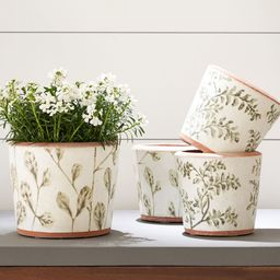 Hand Painted Green Leaf Printed Ceramic Planters | Pottery Barn (US)