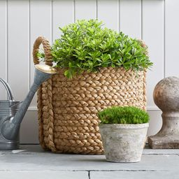 Beachcomber Handwoven Seagrass Round Handled Baskets | Pottery Barn (US)