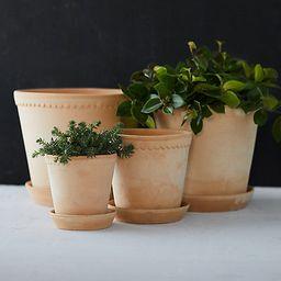 Bergs Scallop Pot + Saucer | Terrain
