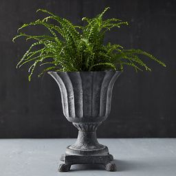 Cast Iron Footed Urn | Terrain
