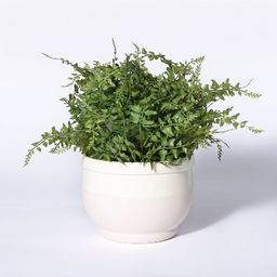 Small Faux Potted Fern - Threshold™ designed with Studio McGee   Target