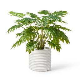 """22"""" x 14"""" Faux Philodendron Selloum Plant in Ribbed Ceramic Pot White - Hilton Carter for Target 