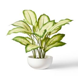"""20"""" x 14"""" Faux Aglaonema Silver Bay Plant in Ceramic Pot White - Hilton Carter for Target 