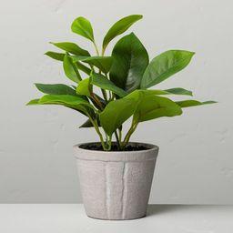 "7"" Mini Faux Azalea Potted Plant - Hearth & Hand™ with Magnolia   Target"