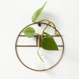 """7"""" x 1.5"""" Wall Mounted Metal Plant Stand Vessel - Hilton Carter for Target 