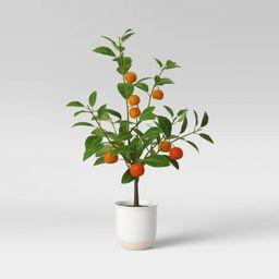 Artificial Citrus Floral Plant in Ceramic Pot White - Threshold™ | Target