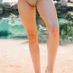 Palm Springs Bikini Top   Amaryllis Apparel