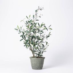 """37"""" Artificial Olive Bush Tree in Pot Black - Threshold™ designed with Studio McGee   Target"""