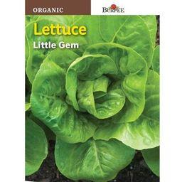 Burpee Lettuce Little Gem Organic Seed-68434 - The Home Depot | The Home Depot